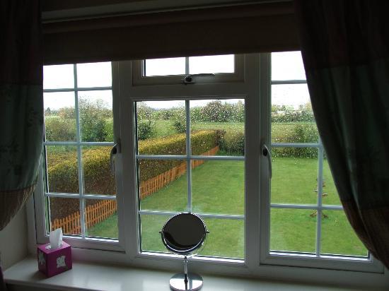 Blenheim Edge: View from room
