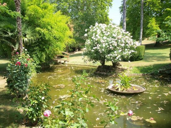 Le Domaine d'Auriac: Garden