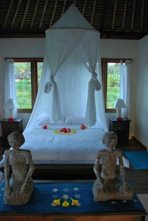 Bebek Biru Sideman Bali : Master bedroom