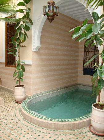 Riad RabahSadia: Plunge pool