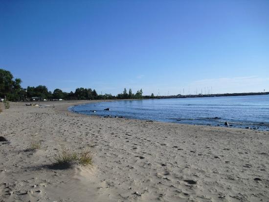 Harbourfront Motel: Beach area