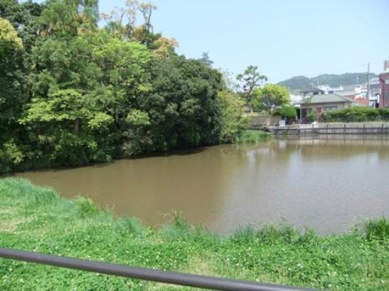 Shingu Inosawa Ukijima Plant Community