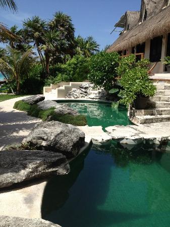 Mezzanine Colibri Boutique Hotel : pool