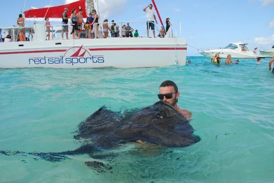 Cayman Islands Activities Tripadvisor