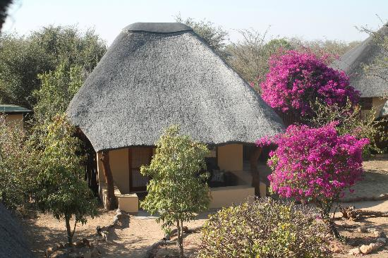 Kambaku Safari Lodge: My Bungalow