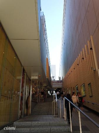 Shinjuku Mylord Mosaic Street : モザイク通り