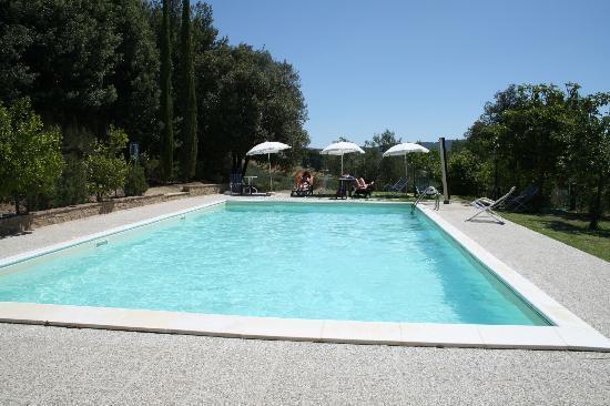 Il Mulino delle Canutole: swimming pool