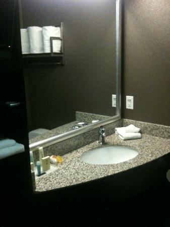 Acclaim Hotel Calgary Airport: The great sink in the amazing bathroom