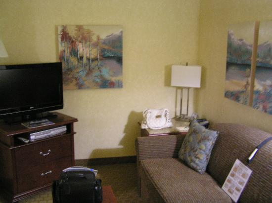 Tahoe Seasons Resort: Living room