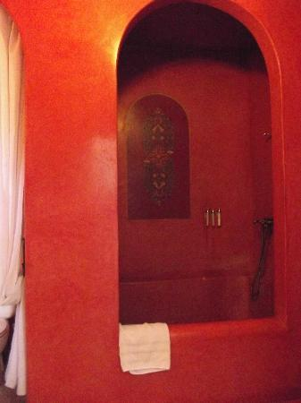 Riad La Terrasse des Oliviers: Shower
