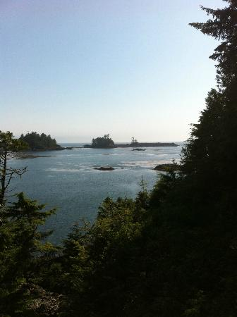 Bostrom's B&B On Little Beach Bay: Hot tub view