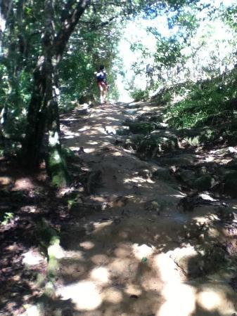 Lopes Mendes Beach: trillia a pouso-lopez
