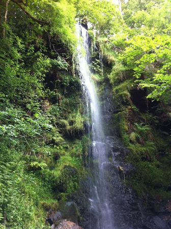 Fairhaven Country Guest House: Mallyan Spout -the walk that's GOT to be done
