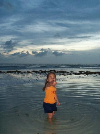 Tropical Beach Resorts: Crescent Beach at Dusk_Tide Pool