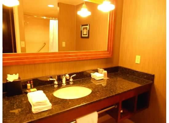 Sheraton Columbus at Capitol Square Hotel : Bathroom