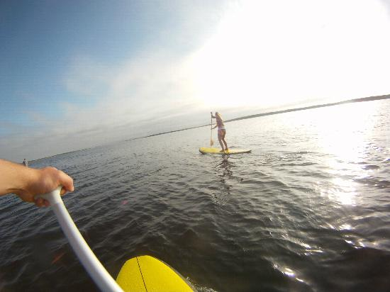 Edgartown Tour Company - Tours : Stand-up Paddle Boarding!