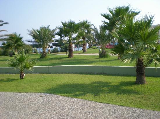 VONRESORT Golden Beach : jardin de l'hôtel