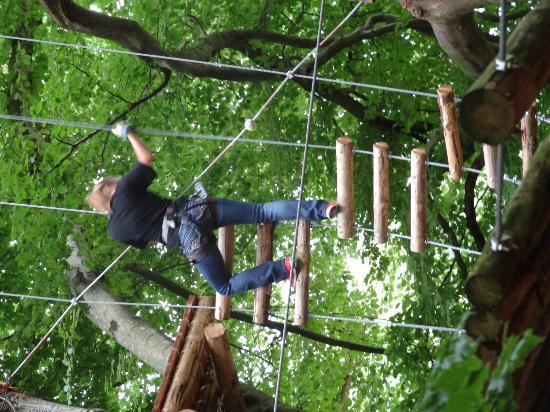 Seilpark Interlaken: Cllimbing on the ropes.