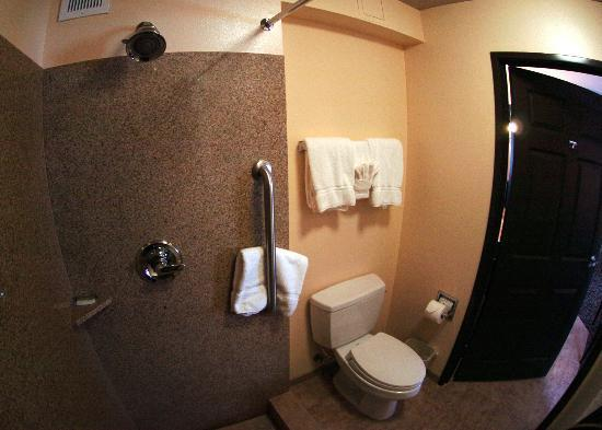Holiday Inn Oceanside Camp Pendleton Area: Bathroom