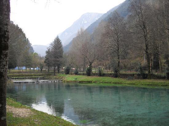 Scheggino, Italia: Laghetto di pesca sportiva