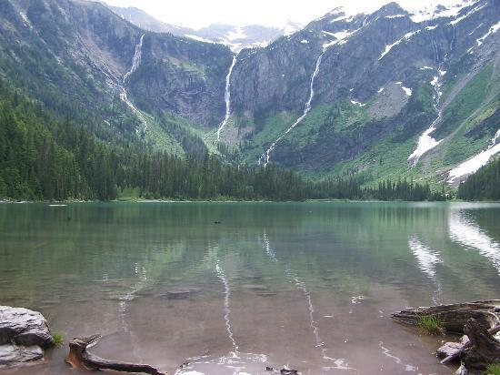 Glacier Campground: Avalanche Lake (great hike!)
