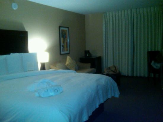 The Orlando Hotel : Really nice room!