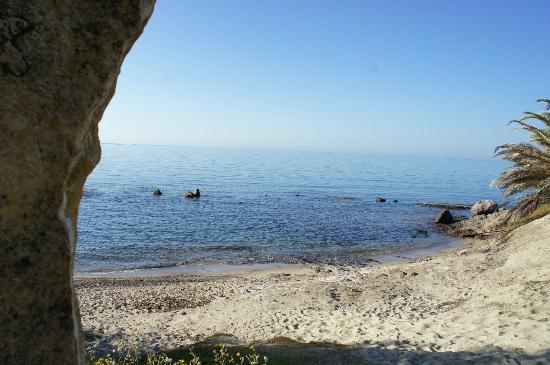 Hotel Costa dei Fiori: la spiaggia