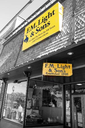 F.M. Light & Sons