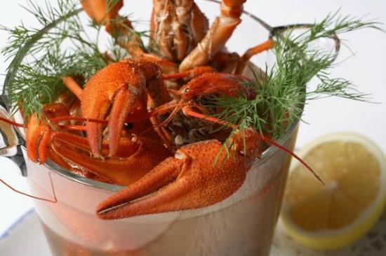 Fish House: Volga crayfish