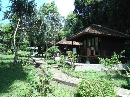 Grajagan, Indonesia: Standard Package Cottages