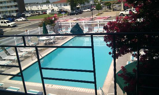 Eden Roc Motel: Pool view from our poolside room.
