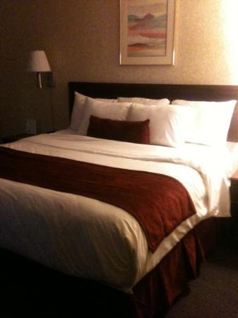 LivINN Hotel Minneapolis North / Fridley : fridley/ King