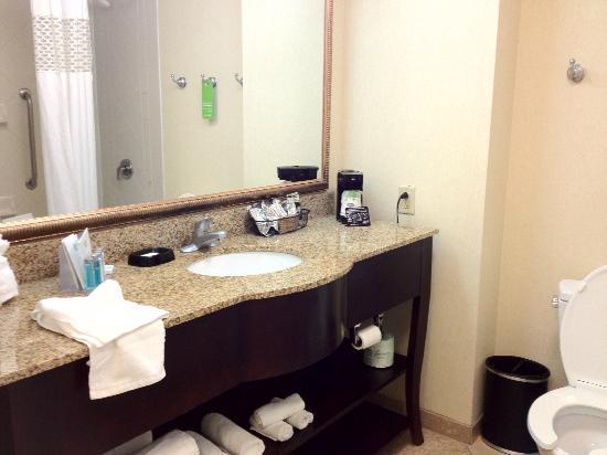 Hampton Inn & Suites Nashville-Smyrna: Bathroom