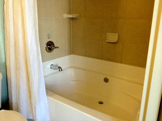 Hilton Garden Inn Atlanta Downtown: Jacuzzi tub