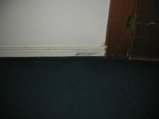 Hotel de L'Eau Vive: All of the baseboards looked like this. Carpet was nasty