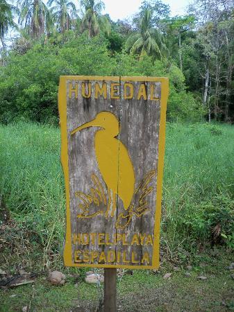 Cabinas Espadilla: wetland conservation area - humedal