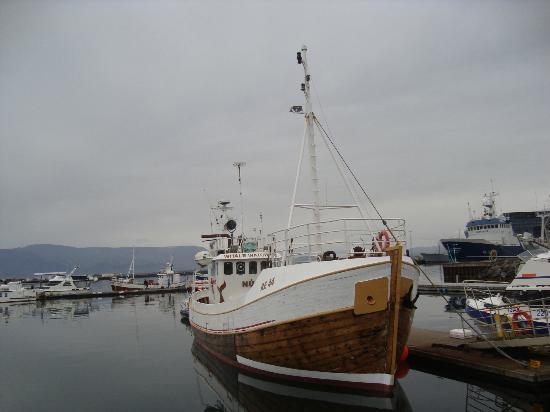 Sjosigling : NUMI - Reykjavik Old Harbour