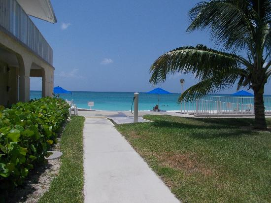 Cayman Reef Resort: View from our back porch