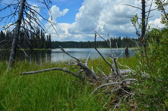 Meadow Lake Fishing Camp: Flapjack Lake