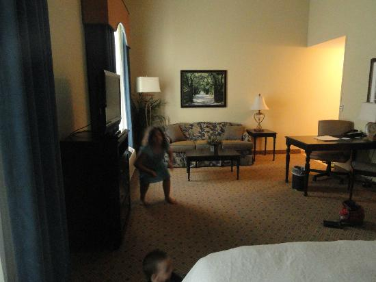 Hampton Inn Murrells Inlet/Myrtle Beach Area: Room.
