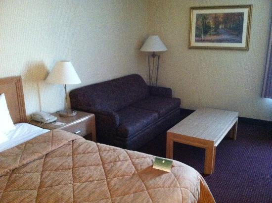 Comfort Inn: sofa