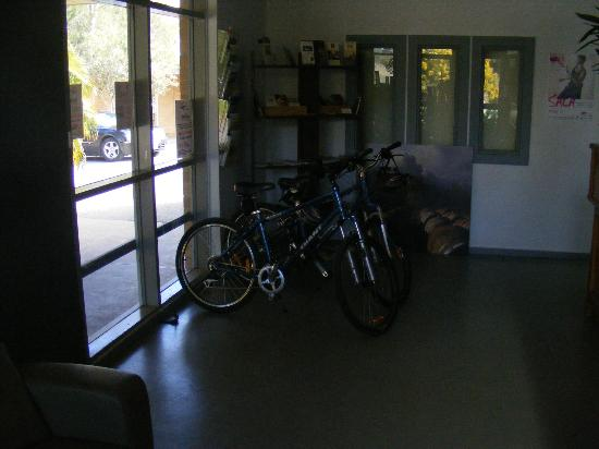 Lyndoch Hill: Bikes for hire
