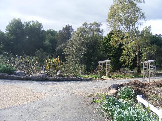 Lyndoch Hill: Gardens