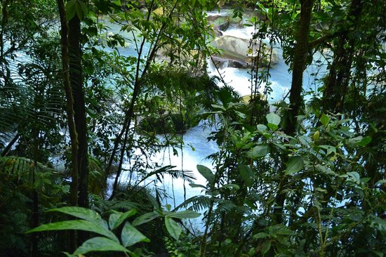 Rio Celeste Hideaway Hotel: From our trail