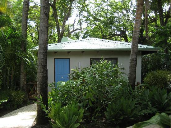 The Harmony Hotel: bungalow 26
