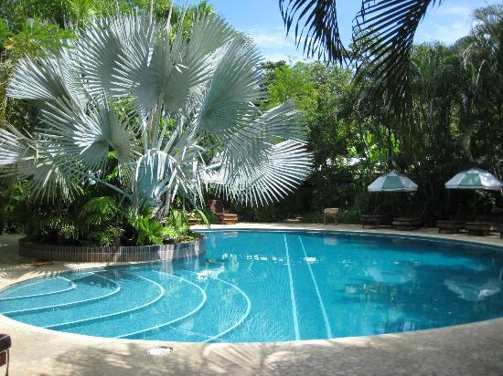 The Harmony Hotel: Pool