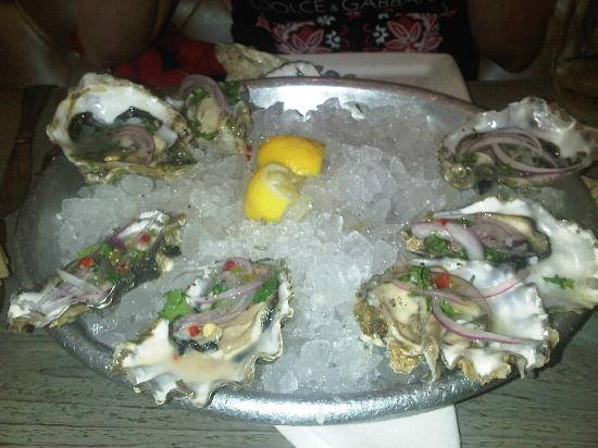 Oysters Ceviche at Blue Plate Oysterette