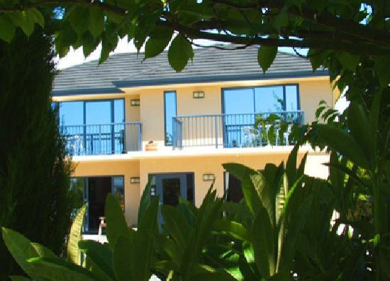 Avalon Manor Motel: Garden View