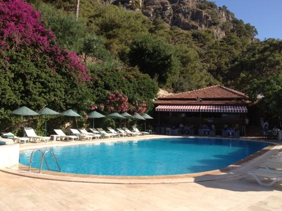 Aygul Hotel: havuz basi