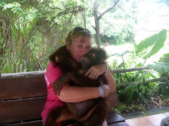 Magilla Bali Tours: bali Safari my favorite memory